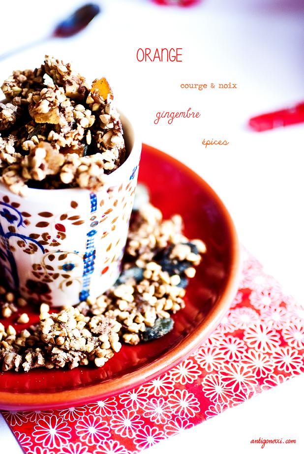 Le granola de Noël - Antigone XXI