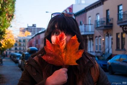 Montréal - Antigone21.com